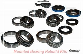 Dodge 412148 Mounted Bearing Rebuild Kits