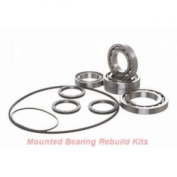 Link-Belt DSELB6855C18 Mounted Bearing Rebuild Kits